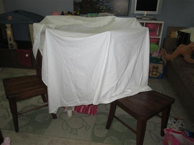 Our fort
