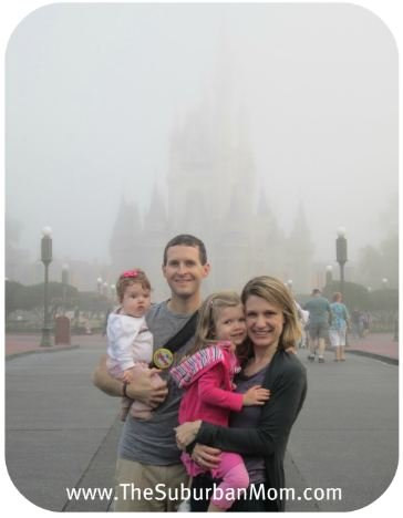 Magic Kingdom Fog