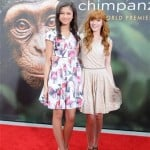 Disneynature's Chimpanzee Red Carpet Premier