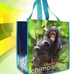 Free Chimpanzee Tote At Disney Store On Earth Day