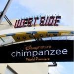 Disneynature's Chimpanzee Red Carpet Premier