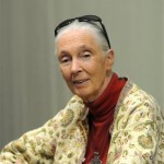 Meeting Chimpanzee's Greatest Champion Jane Goodall