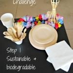 Glad One Bag Challenge Step 1