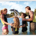 SeaWorld Discovery Cove Discounts with American Express Card