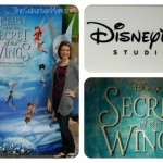 Tinker Bell And The Secret Of The Wings Review