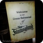 Magic Kingdom's New FantasyLand At Walt Disney World