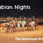 Dinner With Horses, Acrobatics And A Princess At Arabian Nights