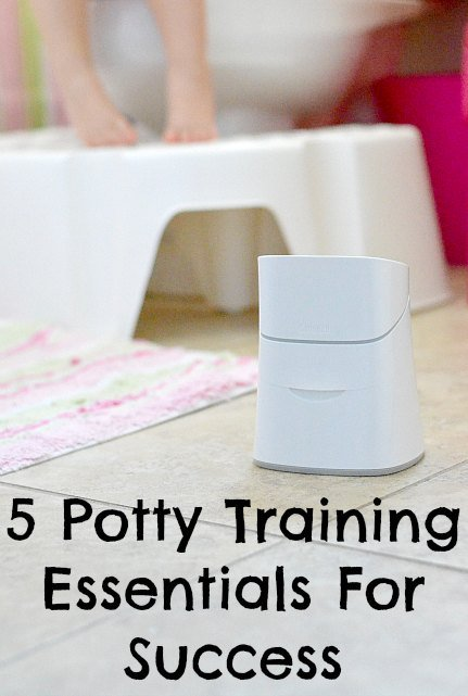 5 Potty Training Essentials For Success