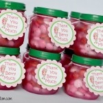Strawberry Shortcake Glass Treat Jars Favors