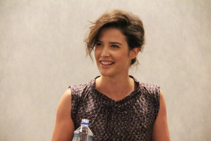 Cobie Smulders Delivery Man