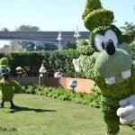 Flower Garden Epcot Goofy Donald