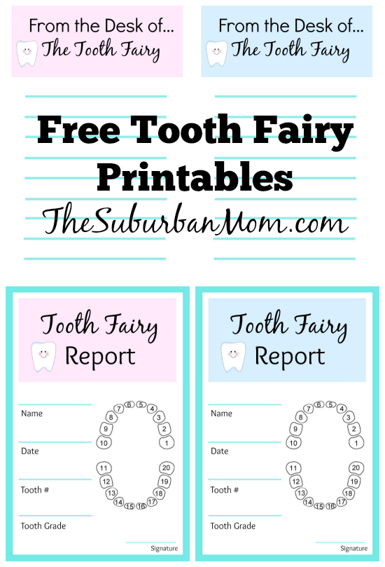 Tooth Fairy Ideas And Free Printables: Tooth Fairy