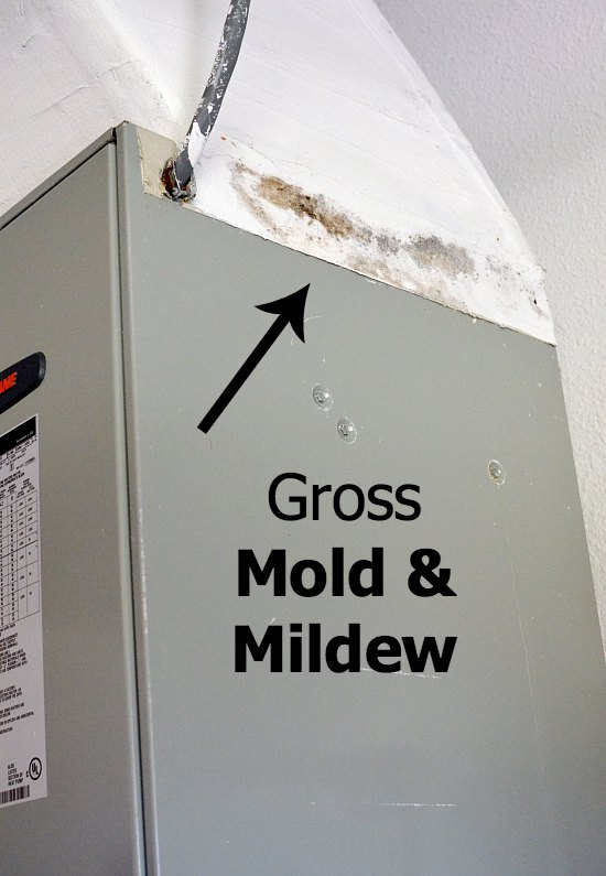 Mold Mildew Air Conditioning
