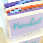 School Paper Organization Pre K-12