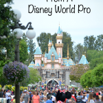 5 Disneyland Tips From A Disney World Pro