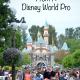 5 Disneyland Tips From A Disney World Pro