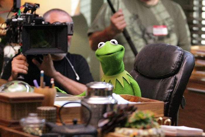 The Muppets Kermit