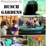 12 ThingsTo Do With A Preschooler At Busch Gardens