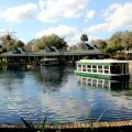 3 Reasons Floridians Should Visit Marion County