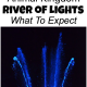 Animal Kingdom River Of Lights Review