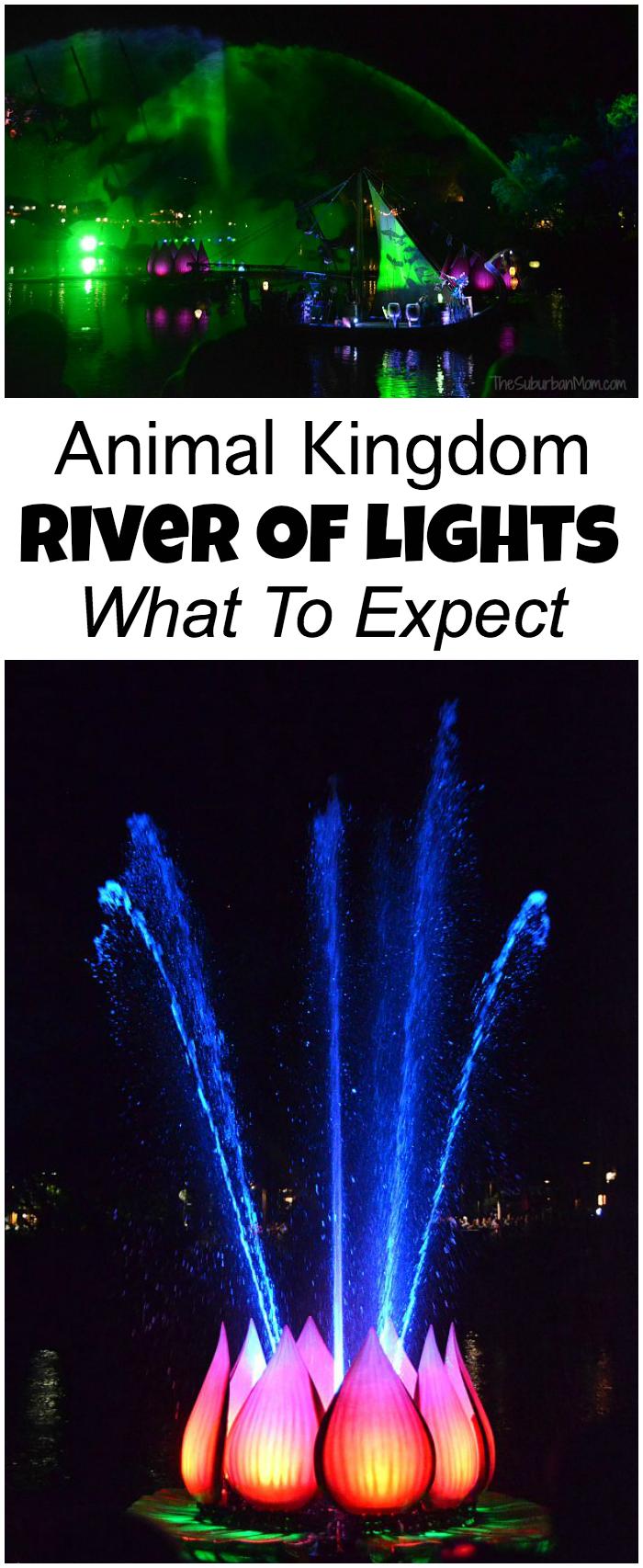 Animal Kingdom River Of Lights