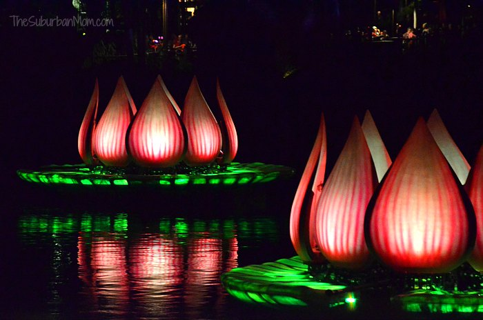River of Lights Lotus Blossoms