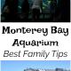 Best Family Tips For The Monterey Bay Aquarium