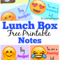 Back To School With Emoji Lunch Box Notes And Mott's