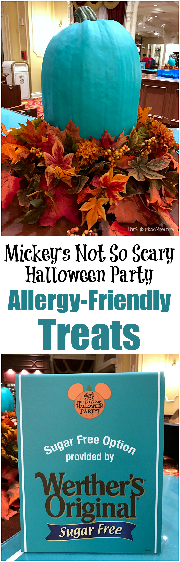 Allergy Friendly Treats At Mickey's Not So Scary Halloween Party