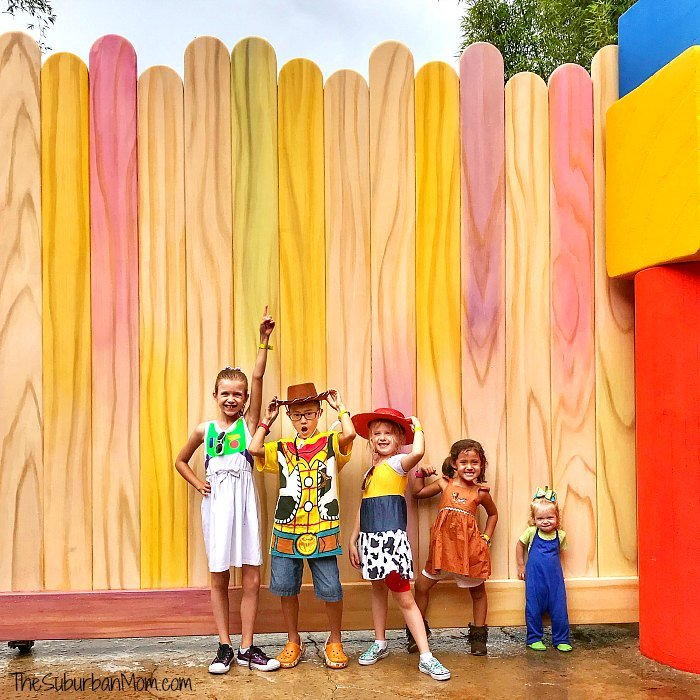 Toy Story Land Popsicle Stick Wall