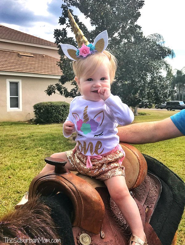 Unicorn birthday Party Unicorn Rides