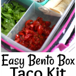 Easy Bento Box Taco Kit