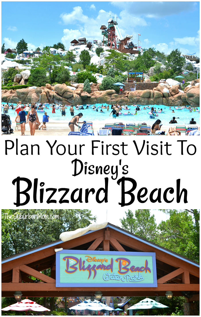 Plan Your First Visit To Disney Blizzard Beach