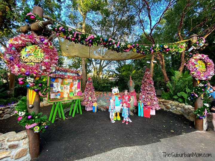 Animal Kingdom Daisy Duck Christmas
