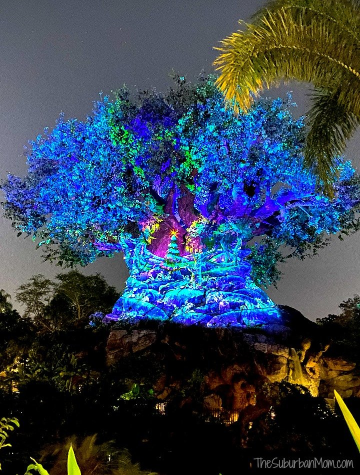 Animal Kingdom Tree of Life Christmas