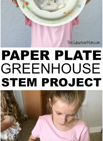 Paper Plate Greenhouse STEM Project