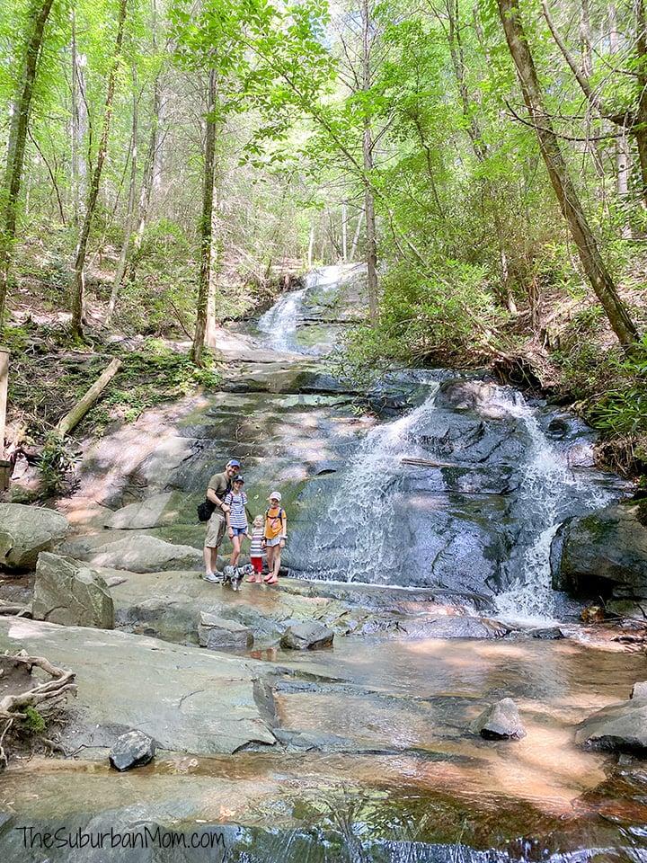 Falls Branch Falls Blue Ridge Georgia