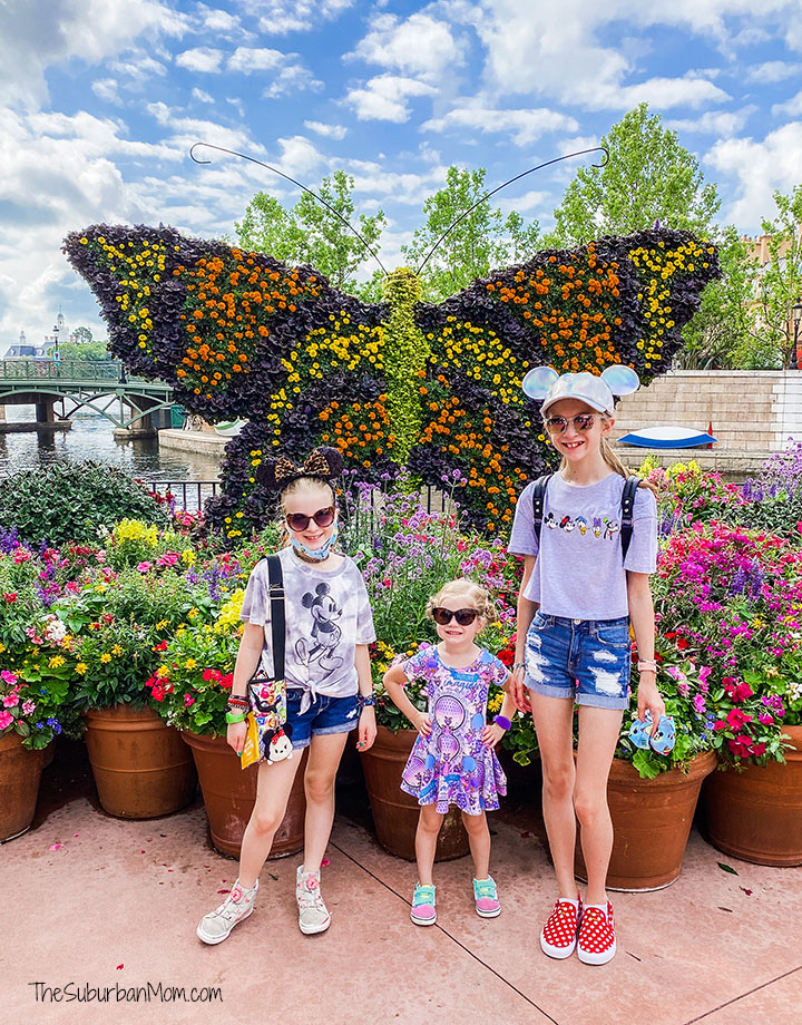 Butterfly Topiary Epcot Flower and Garden Festival