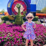 Figment Topiary Flower And Garden Festival