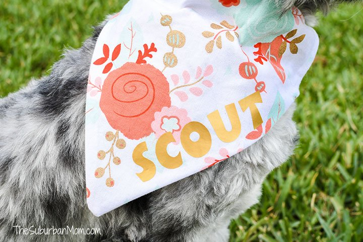 Personalized Dog Bandana