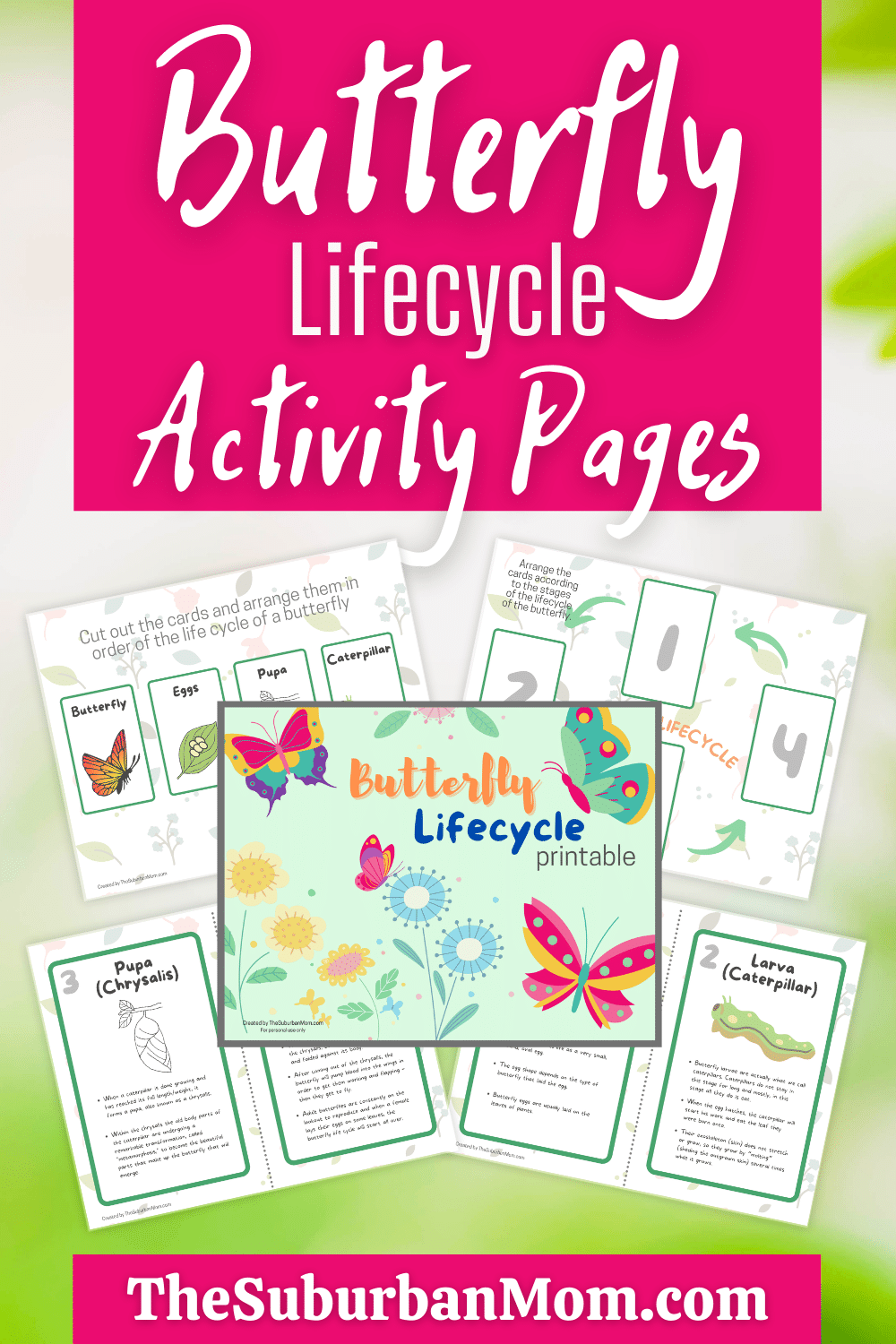 Butterfly Lifecycle Activity Pages